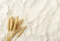 Wheat Flour, Quinoa Flour, Wheat Bran, Soya Flour, Maize grains, Maize flour