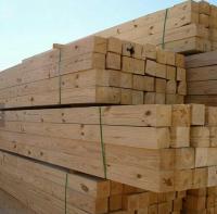 Quality Birch Oak Pine Spruce wood timber lumber