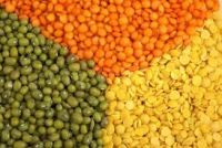 Green Mung Beans , Red lentils, Chick peas kabuli and desi