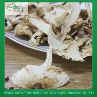 Natural Organic Tricholoma Matsutake Slice