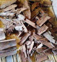 Cabinda tree bark