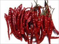 Dundicut Whole Chilli,Dry Red Chilli Dundicut Whole Round Stemless Chilli