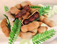 Indian Tamarind