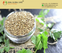 Best Quality Indian Coriander Seeds