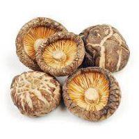 organic dried shiitake mushroom
