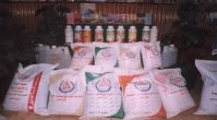 Nitrogen Fertilizers, Foliar Fertilizers, Inorganic Fertilizers, Phosphate Fertilizers.