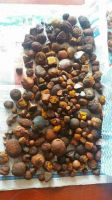 Ox Gallstones / Cattle Gallstones / Cow Gallstones / Gallstones For Sale