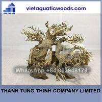 Bonsai Driftwood Supplier For Aquariums