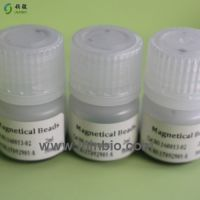 Free DNA extraction biological magnetic beads