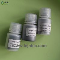 Carboxyl magnetic beads/particle