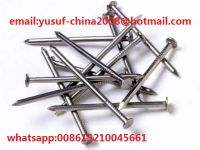 all kinds of common nails &wood nails for conctruction