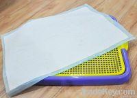 Disposable Pet pads