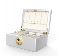 Jewelry Box Features Fingerprint Authentication Security