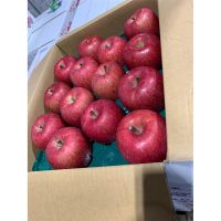Popular flavor high quality and cheap price fuji apple fresh fruit