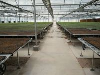 2017 New nursery tray flood rolling bench greenhouse