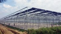 The Cheapest Hot Sale Sainpoly Agricultural/Commercial Plastic Greenhouse