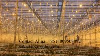Enlo large agricultural with insulated tempered glass greenhouses for aquaponic system