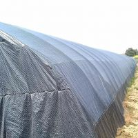 Reinforced Woven Fabric Black/White Grid Film / Waterproof Shade Net for Agriculture Edible Fungi Mushroom / Animal House