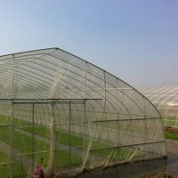 Agricultural Anti Insect Mesh Proof Net for Greenhouse