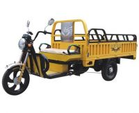 Dry battery electric leisure tricycle