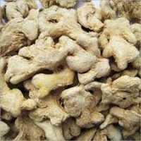 Whole Dried Ginger | Dry Ginger