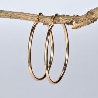 925 Sterling Silver New Design Ear Rings For Women Birthday Gift