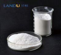 Redispersible Polymer Powder (RDP)