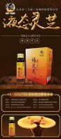 Ganoderma lucidum concentrate oral liquid