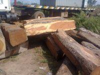 Apa Wood
