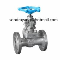 Forging Steel Flanged Gate Valve