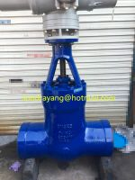 Powerplant Gate Valve