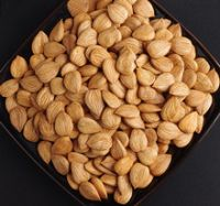 Wholesale Almonds Nuts, Cashew Nuts