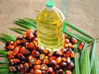 Malaysia cheap price refined RBD palm oil