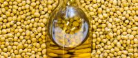Refined soybean oil hot sale