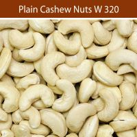 Vietnam Dried Cashew Nuts best price fresh w240 cashew nuts