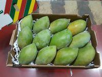 Fresh Mango - Alphonso   Tommy Atkins   Totapuri