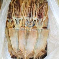 New Arrival Seafood Illex Squid Dry Squid