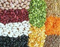 Mung Beans, Yellow Split Peas, Red Split Lentils, Chick Peas, Yellow Split Peas, Sugar Beans, Black Beans