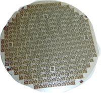 Piezoresistive Sensitive Pressure Sensor Chips