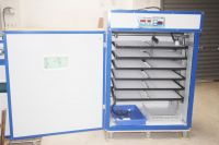 China cheap digital commercial chicken poultry reptile hatching machine
