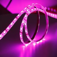 Led strip rgb 5050 waterproof led strip light 12v/24v led lights 14.4w outdoor led strip lights