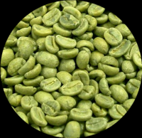 Green Coffee Bean Extract Chlorogenic Acid Powder 50%