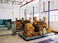SENYUAN  Power 1MW to 50MW  Biogas Power Plant(Containerized power plant)