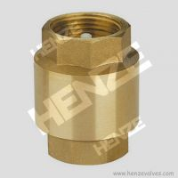 Thread NPT BSP Flanged RF FF Bronze Brass Lift T Type Swing Check Valve