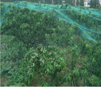 anti-bird net
