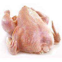Premium Grade Halal Frozen Whole Chicken