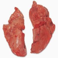 Halal Chicken Livers &   Chicken  Hearts