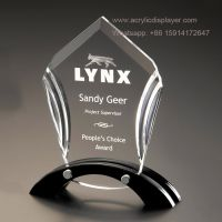 Blank Acrylic Awards Display Stand