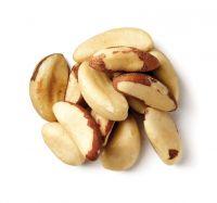 Brazil Nuts/Macadamia/Cashew Nuts/Pistachio Nuts/ Walnuts/Almonds Nuts/Macadamia