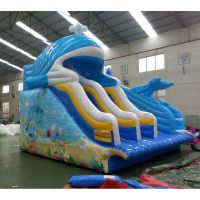 Outdoor playground equipment inflatable water slide double slide for kids
